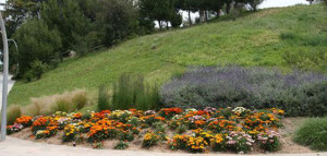 Joan Brossa Park - Montjuic