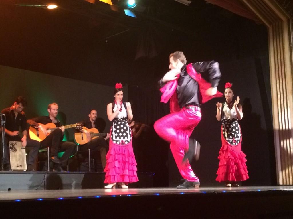 Palacio del Flamenco show