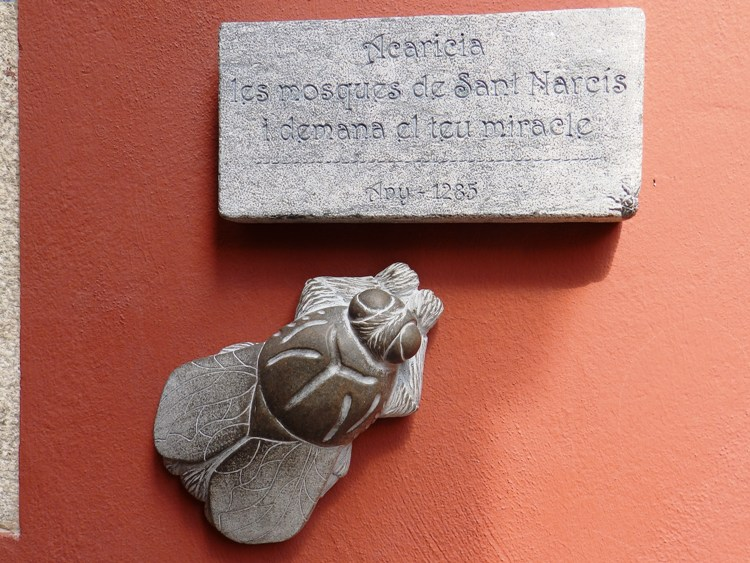Pat the flies of Sant Narcís in Girona and ask for a miracle