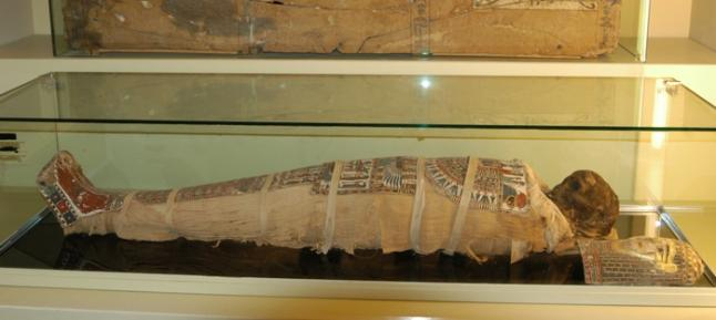 The mummy of the museum