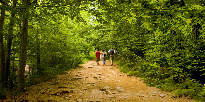 Walking routes in the Montseny