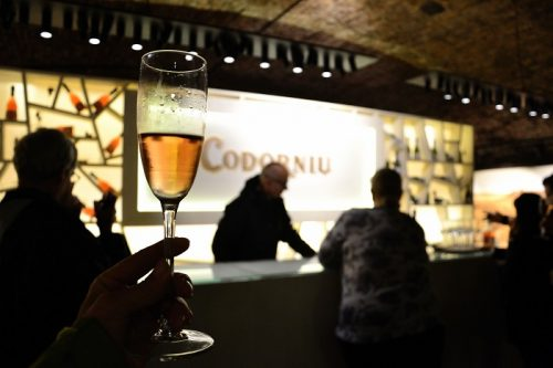 Fresh, sparkling, delicious… the Catalan cava of Codorniu