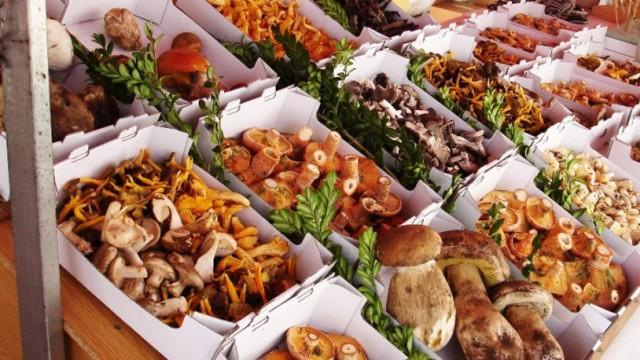Mushroom market stall